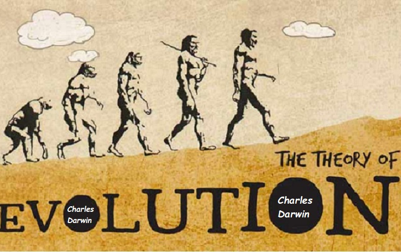 Reviewing Charles Darwin's Theory of Evolution