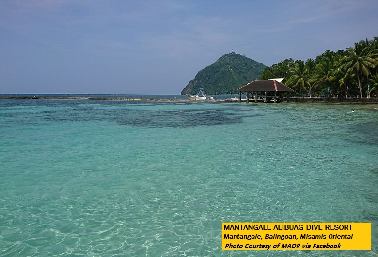 Mantangale Alibuag Dive Resort: A plunge to do
